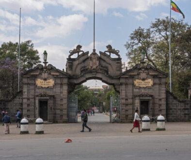 Tesfa-Ilg Foundation for Ethiopia